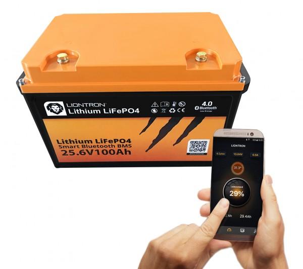 25,6V Lithium Batterie 100Ah - ideal für Elektromotoren